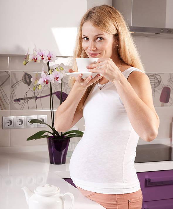 Имбирь во время беременности