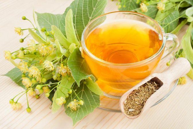 липовый чай для похудения